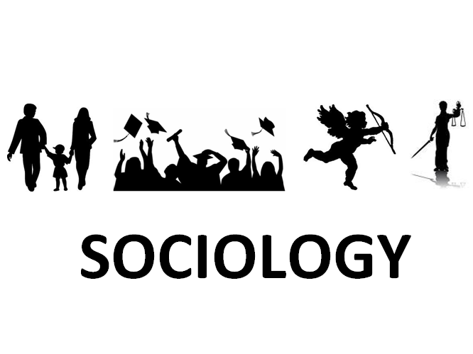 The 3 Seeing Sociology An Introduction (3rd Edition) Perspectives